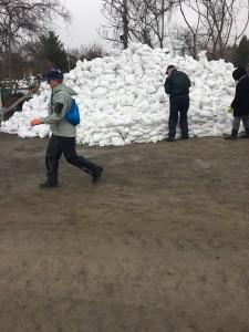 2019 Flood Sand Bagging Cumberland