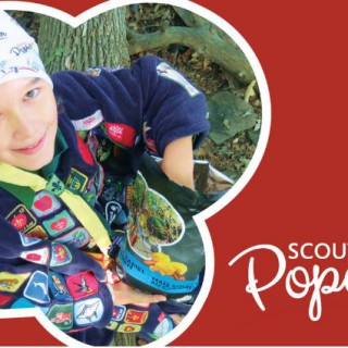 Scout Popcorn Pic 3