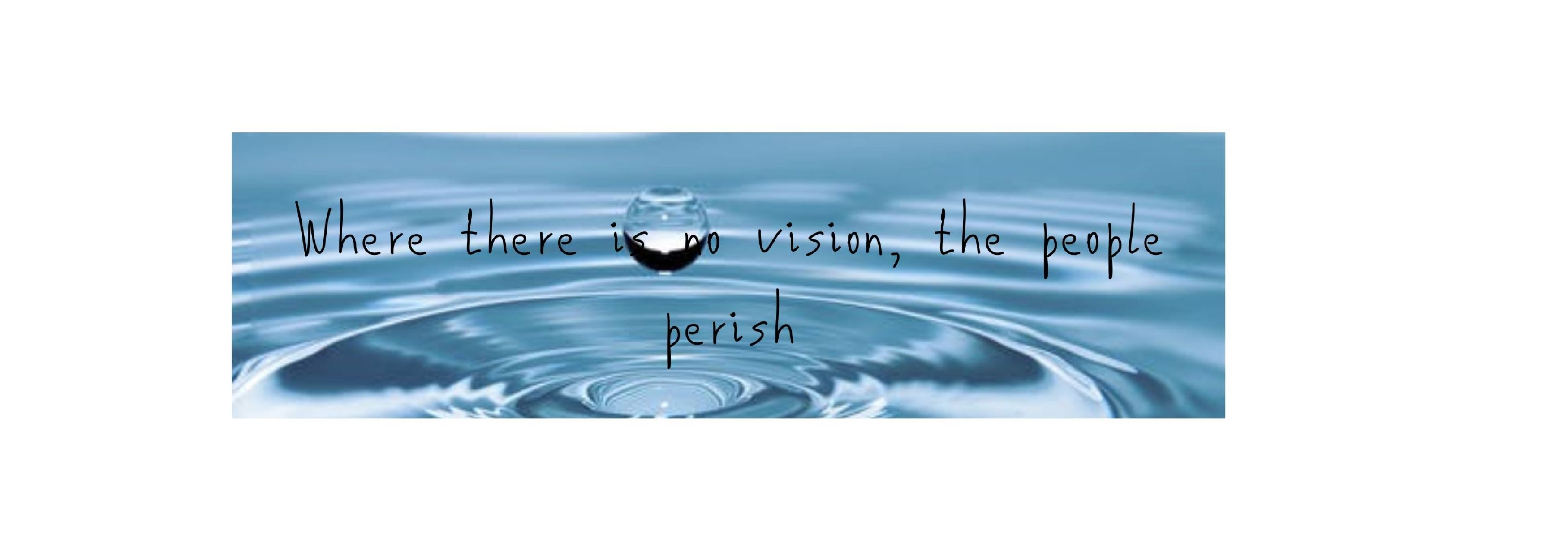 FVM Where there is vision, the people perish 4
